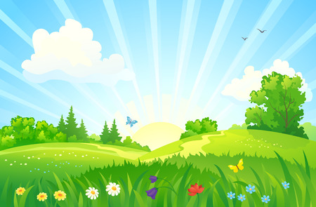champ de fleurs: illustration d'un lever de soleil paysage d'été