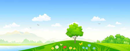 cartoon land: Vector illustration of a summer landscape Illustration