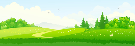 Vector illustration of green summer woods