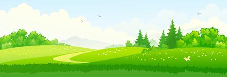 Vector illustration of green summer woods