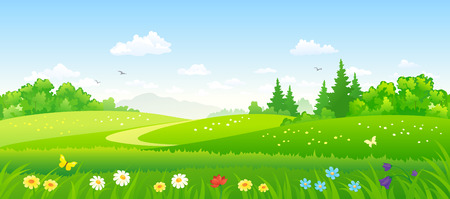 panoramic sky: Vector illustration of beautiful summer forest fields