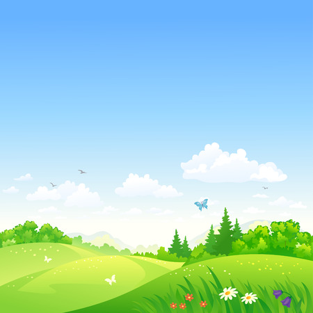 flower meadow: Vector illustration of a summer rolling landscape