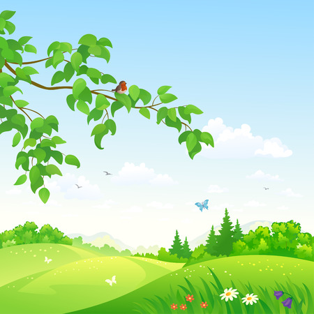 Vector illustration of a beautiful summer rolling landscape with a branch Stock Illustratie