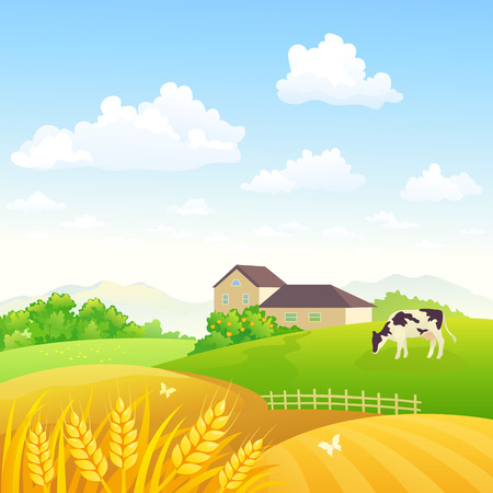 Vector illustration of a rural scenery with a grazing cow and wheat fields