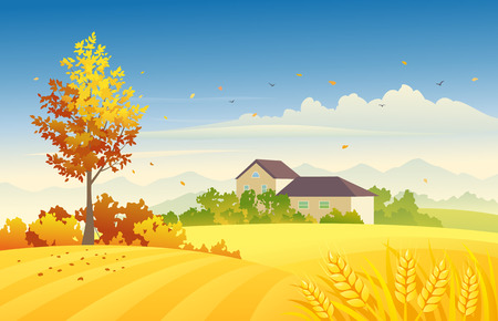 windy day: illustration of an autumn farm scene with wheat fields and bright foliage tree