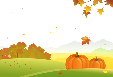 illustration of an autumn landscape with pumpkins on a white background