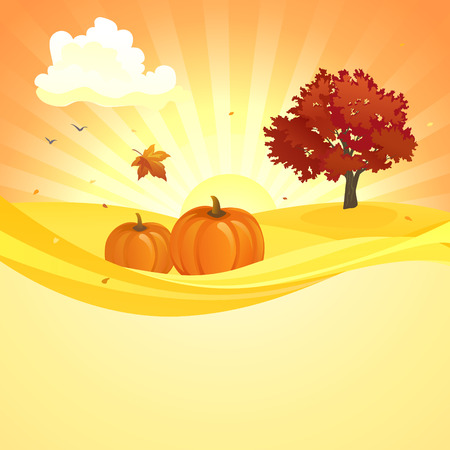 foliage tree: illustration of an autumn sunset background with pumpkins and red foliage tree Illustration