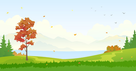 Vector illustration of an autumn forest background Stock Illustratie