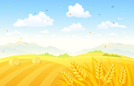 Vector illustration of a beautiful autumn background with wheat fields