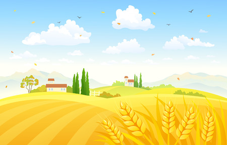 Vector illustration of a beautiful autumn scene with wheat fields Ilustração