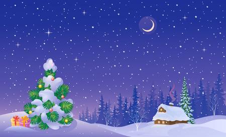schneelandschaft: Winterlandschaft