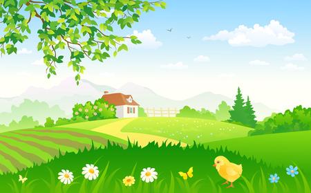 夏の田舎の庭の図  イラスト・ベクター素材