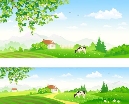 illustratie van de zomer landschap met een grazende koe