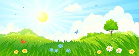 夏の日当たりの良い草原パノラマのイラスト  イラスト・ベクター素材