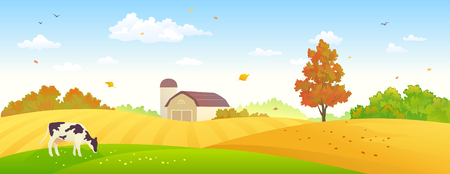 Vector illustration of an autumn farm banner with wheat fields and a grazing cow Illustration