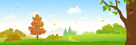 Vector illustration of a fall forest landscape, panoramic banner