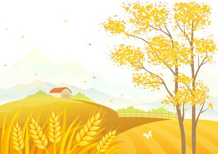 granary: Vector illustration of an autumn tree and wheat fields on a white background