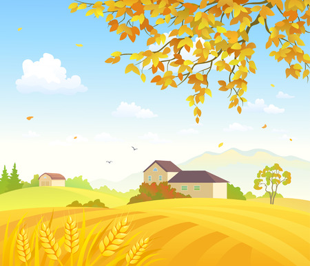Vector illustration of beautiful golden wheat fields and an autumn tree branch Illustration