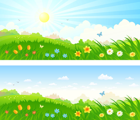flower fields: Vector cartoon illustration of a beautiful meadow with spring flowers, panoramic banners