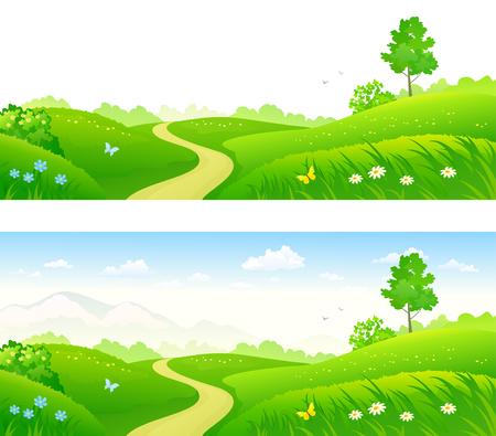 Vector illustration of a green summer meadow 向量圖像