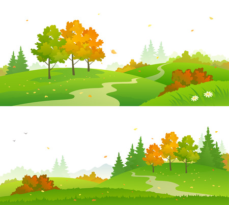 Colorful autumn forest. Illustration