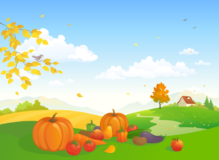 Vector cartoon illustration of an autumn harvest