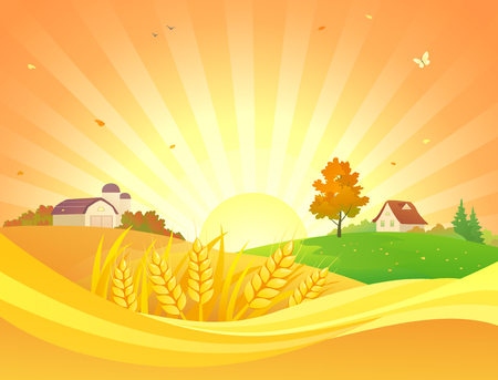 Vector cartoon drawing of an autumn sunset landscape