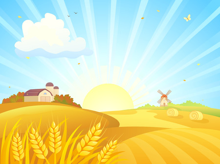 Vector illustration of an autumn sunrise landscape with wheat fields, barns and a windmill Stock Illustratie