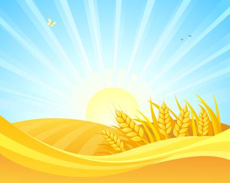 Dibujos animados de vector de dibujo de campos de trigo sobre un fondo de amanecer