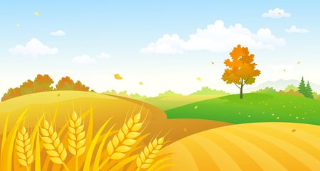 Vector cartoon illustration of fall wheat fields Banque d'images - 129752958