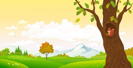 Vector cartoon drawing of an autumn forest with a cute squirrel Stock Illustratie