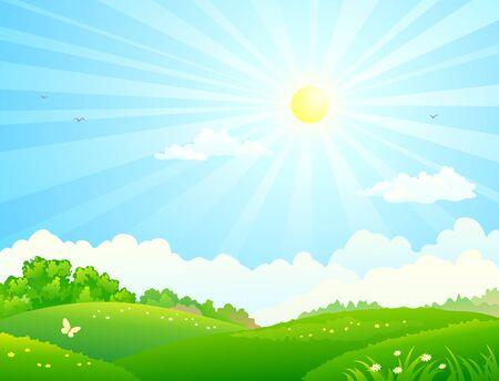 Vektorillustration von grünen Feldern und sonnigem Himmel Vektorgrafik