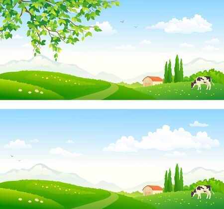 Vector illustration of a summer farm pasture with a grazing cow Illustration