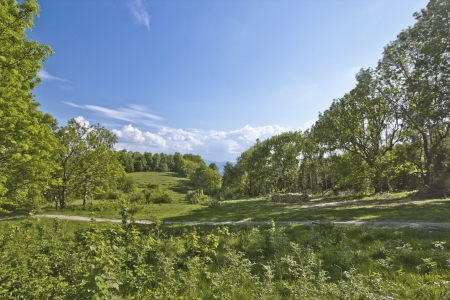 Green grass hill meadow with perfect blue sky with clouds on a sunny summer day