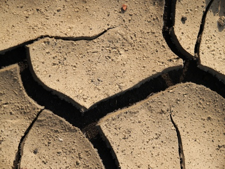 Detail of the cracked mud texture photo