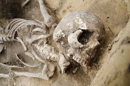 Exhumed skeleton of man with skull and chest visible