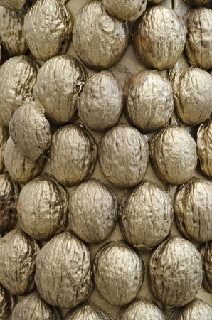 nutshells: Decorative texture made of gold painted nutshells