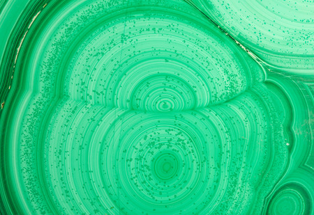 lapidary: Detail of the polished slab of layered green malachite