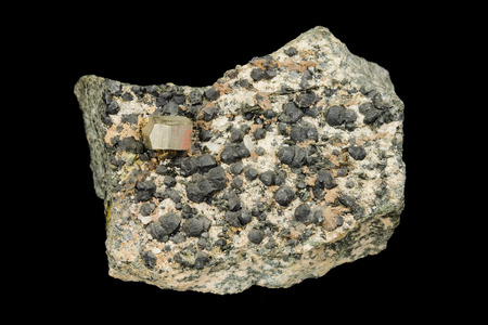 sulfide: Golden pyrite crystal and clinochlore aggregates from alpine type vein