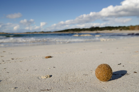 Lonely sand beach in the sunny day, Mallorca, Spain