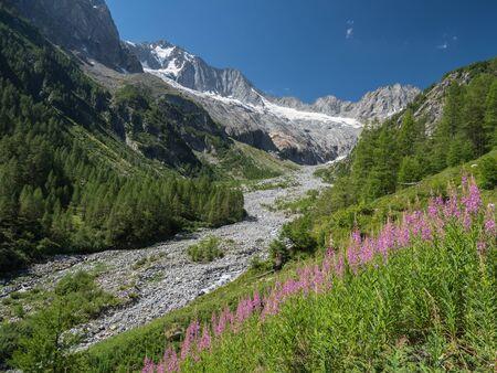 Alpine landscape of Val Sissone valley and snowy peaks, Italian Alps