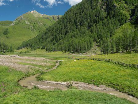 Summer Alpine landscape with Astner Moos swamp, Hohe Tauern, Austria