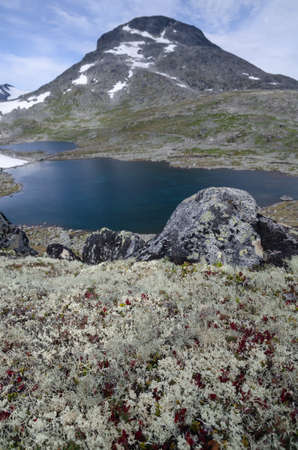Summer landscape of Jotunheimen national park with mountain peak, lake and lichens in  foreground, Norway, Scandinavia