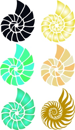 shell 矢量图片