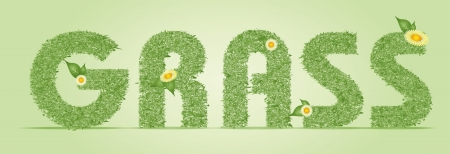 BIO - text decorated with and leaves, vector illustration Illustration