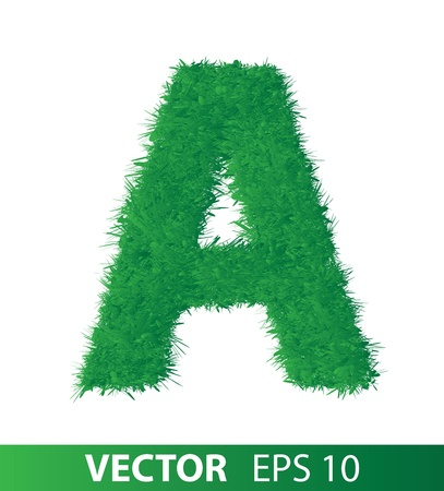alphabet of green grass on white background