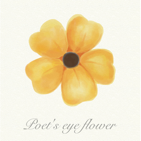 Yellow poets eye flower isolated on a watercolor paper background with its name