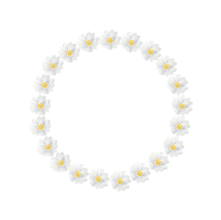 Watercolor white primrose wreath isolated on a white background