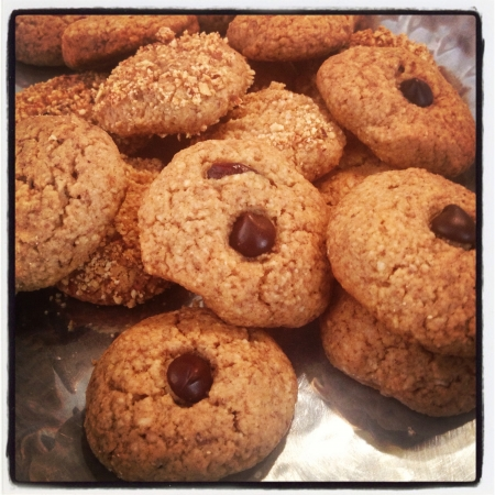 Almond and chocolate cookies no flour no sugar no lactose