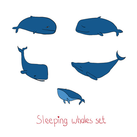 contour: Vector illustration with contour cute sleeping whales